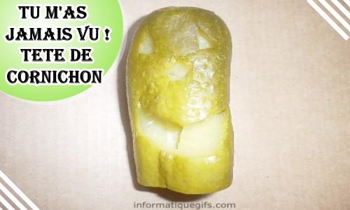 Cornichon vinaigre et cornichon aigre doux humour - Variete de cornichon ...